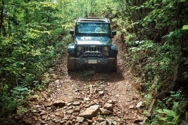 Jeep Wrangler Cover Photo