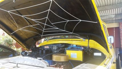 Spider web under the bonnet